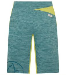 Force Short pantaloni corti