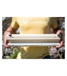 Lattice Testing and Training Rung