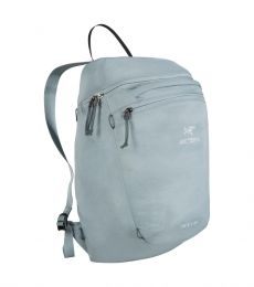 Index 15 backpack - Last Season's